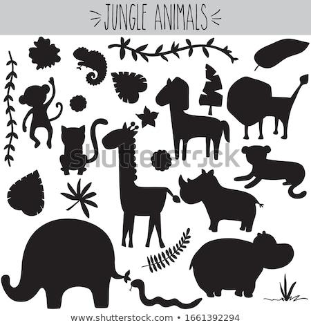 Vektör komik hayvan siluetleri toplama dizayn Stok fotoğraf © tiKkraf69