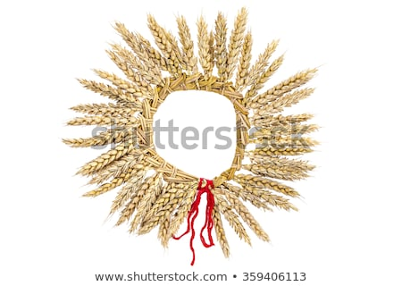 Christmas stro krans decoratie foto presenteert Stockfoto © Dermot68