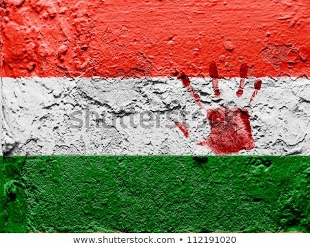 Сток-фото: Гранж · флаг · Венгрия · ветер · текстуры