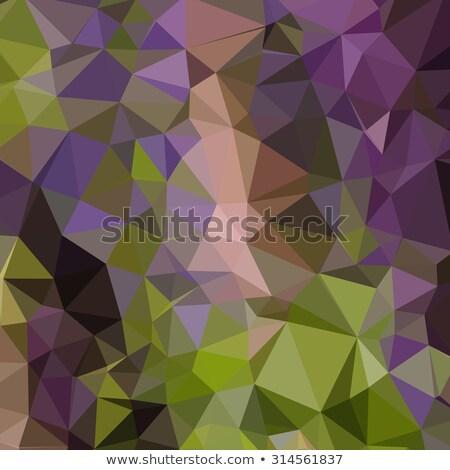 Paars abstract laag veelhoek stijl illustratie Stockfoto © patrimonio