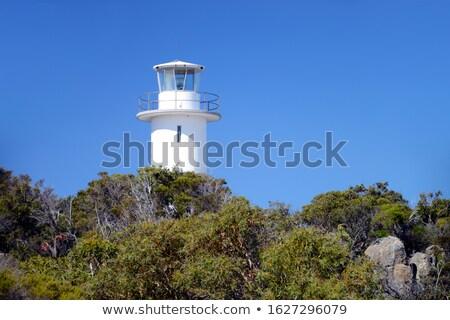 Parc péninsule tasmanie Australie scénique Photo stock © roboriginal