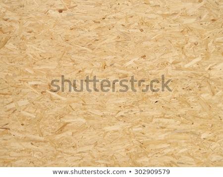 Drewna WC kot świetle piasku życia Zdjęcia stock © avq