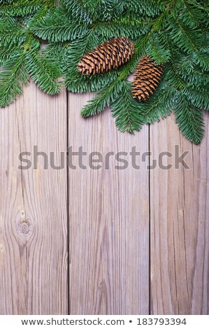 Ladin ahşap Noel yılbaşı ağaç Stok fotoğraf © Valeriy