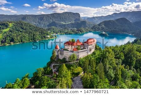 Castelo lago Eslovenia rocha nublado céu Foto stock © Kayco