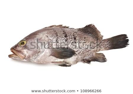 Pesce mercato alimentare mare sfondo Foto d'archivio © tang90246