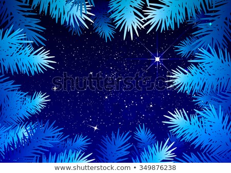 Starry sky in the winter forest. Spruce branches frosty pattern Stock photo © orensila