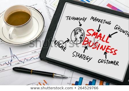 negócio · atacar · plano · tático · estratégia · equipe - foto stock © lightsource