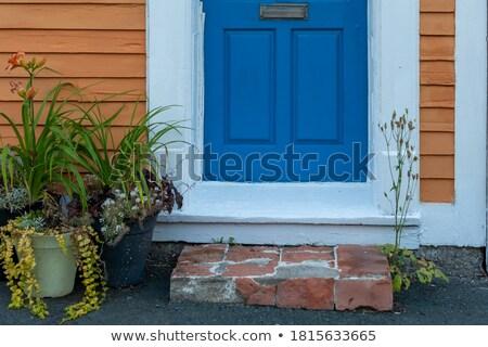 oude · Blauw · houten · deur · traditioneel · entree - stockfoto © dariazu