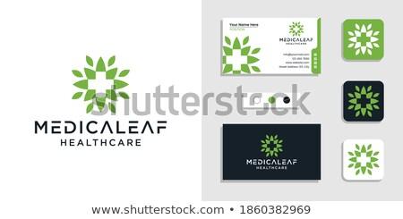 hennep · blad · icon · natuur · groene · geneeskunde - stockfoto © zuzuan