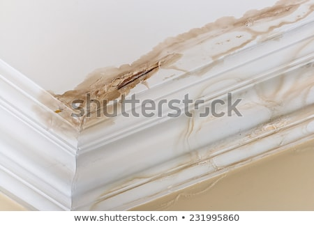 water damaged ceiling and wall stock photo © michaklootwijk