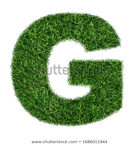 A letter G for grass Stock photo © bluering