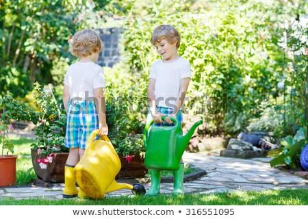 Erkek ikizler sulama örnek su çocuklar Stok fotoğraf © adrenalina