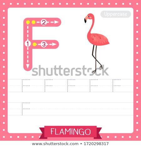 Flamingo illustratie kinderen natuur kind Stockfoto © bluering