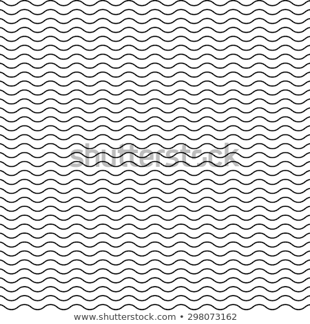 Vector Seamless Black and White Wavy Lines Pattern stock photo © CreatorsClub