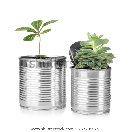 Used aluminum can in green color Stock photo © bluering