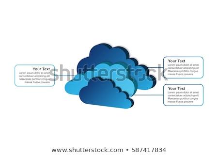 Nube stoccaggio vettore infografica relazione modello Foto d'archivio © orson