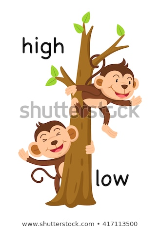 Oposto palavras baixo alto ilustração mulher Foto stock © bluering