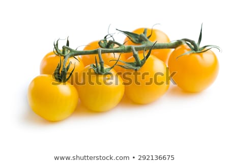 Yellow Tomatoes stock photo © naffarts