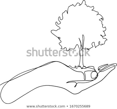 Man holding green small plant vector illustration. Stock photo © RAStudio