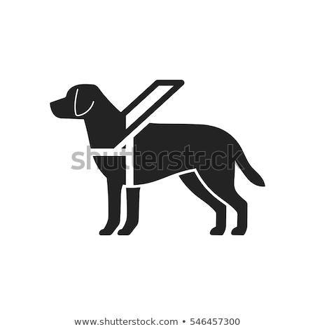 Przewodnik psa ikona pomarańczowy czarny człowiek Zdjęcia stock © angelp
