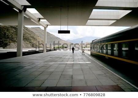 Ferrovia estação tibete cenário paisagem trem Foto stock © bbbar