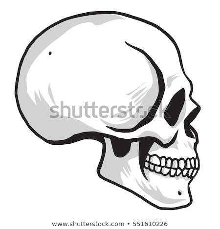 Crâne design santé art noir vie Photo stock © doddis