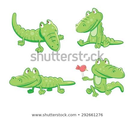 Dört farklı vahşi hayvanlar mutlu yüz örnek gülümseme Stok fotoğraf © bluering