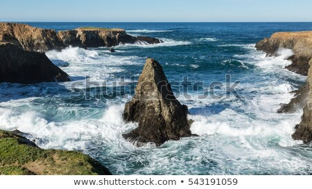 Northern California Rugged Coastline. Stock photo © yhelfman