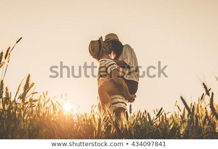 Pár csók búzamező férfi természet búza Stock fotó © IS2