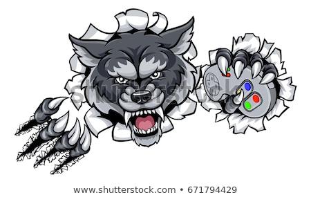 Cartoon · волка · компьютер · сидят · рок · портативного · компьютера - Сток-фото © krisdog