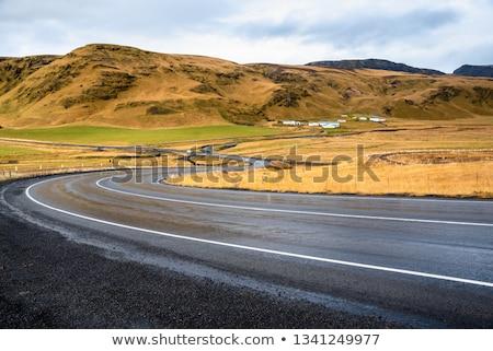 typique · route · Islande · horizon · herbe · nature - photo stock © kotenko
