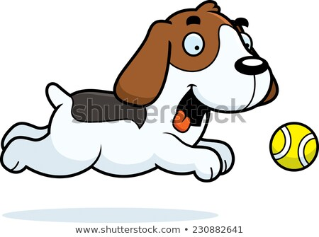 Cartoon Beagle Chasing Ball Stock photo © cthoman