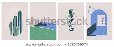 кактус простой линия стиль вектора шаблон Сток-фото © yopixart