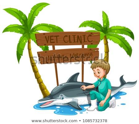 Medico delfino zoo illustrazione pesce Foto d'archivio © colematt