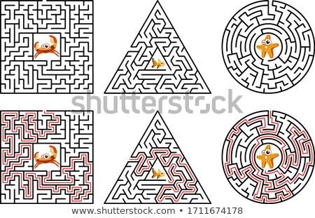 Labirintus szabadidő játék grafika szett válaszok Stock fotó © izakowski