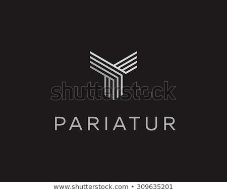 Falcão logotipo vetor ícone símbolo projeto Foto stock © blaskorizov