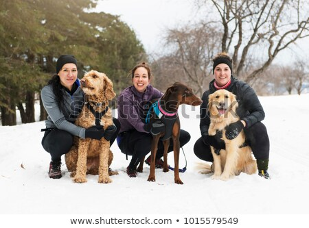 Canicross woman group have fun in winter season Stock photo © Lopolo
