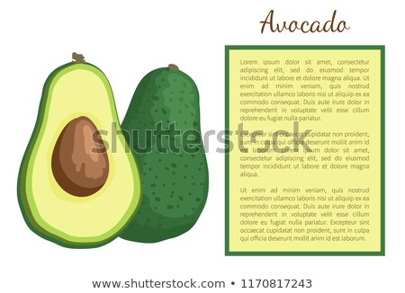 avocat · alligator · poire · exotique · juteuse · fruits - photo stock © robuart