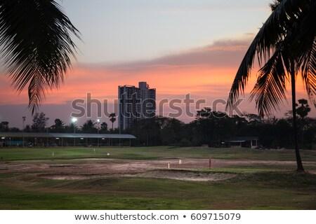 гольф · клуба · мяч · для · гольфа · газона · иллюстрация · небе - Сток-фото © bluering