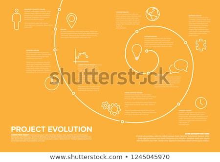 Projektu ewolucji timeline szablon spirali model Zdjęcia stock © orson