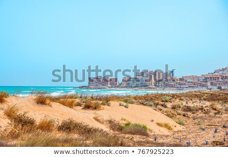 La Mata beach in the south of Spain Stock photo © amok