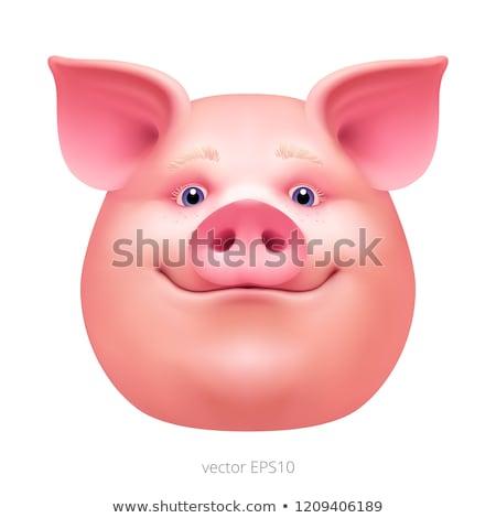 Rózsaszín disznó háziállat karnevál maszk vektor Stock fotó © robuart