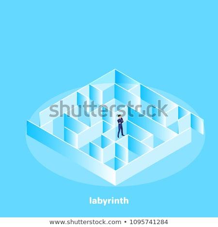 Zakenman permanente midden doolhof elegante naar Stockfoto © ra2studio