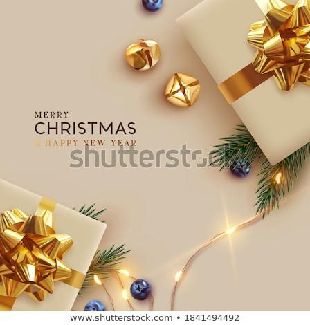 Karácsonyi üdvözlet ajándék doboz fenyőfa ág karácsony üdvözlőlap Stock fotó © karandaev