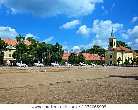 表示 町 チェコ共和国 修道院 建物 教会 ストックフォト © borisb17