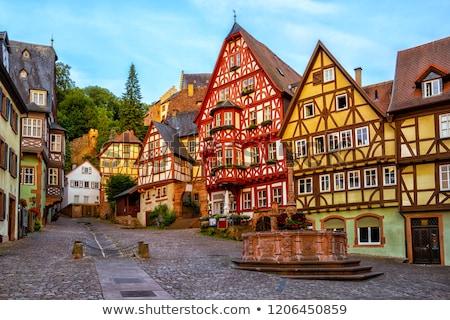 Historic house facades in Frankfurt Stock photo © manfredxy