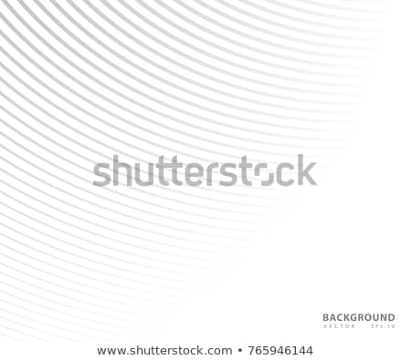 White and gray curve gradient texture. Simple wavy pattern. Vector creative wave background Stock photo © ExpressVectors