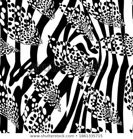 White tiger skin with black stripes, wide background Stock photo © evgeny89