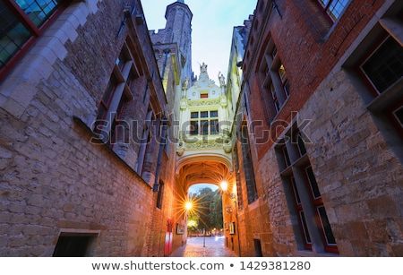 Casa entrada Bélgica puerta ventana edad Foto stock © dmitry_rukhlenko