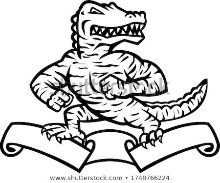 Gator аллигатор тигр Постоянный лента Сток-фото © patrimonio